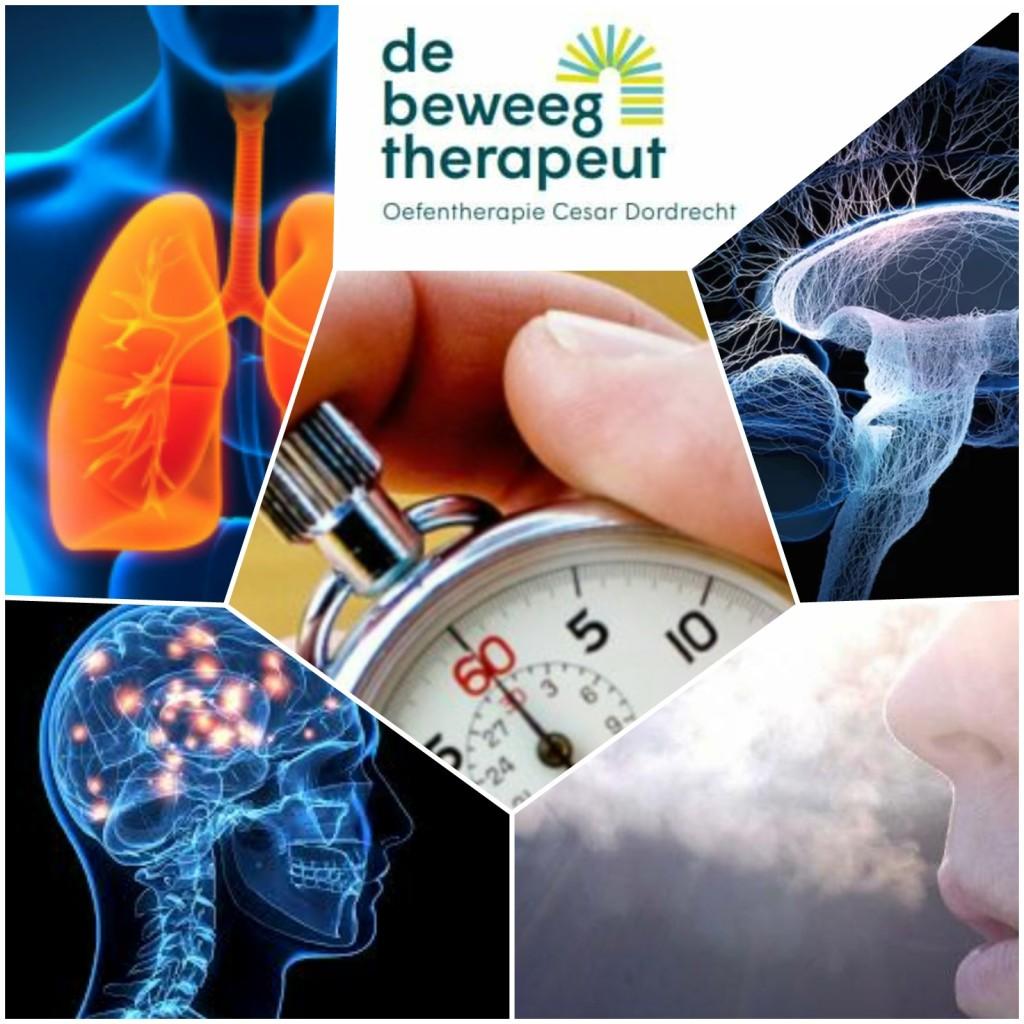 1 minuut pauze - De Beweegtherapeut - Oefentherapie Cesar Mensendieck Dordrecht